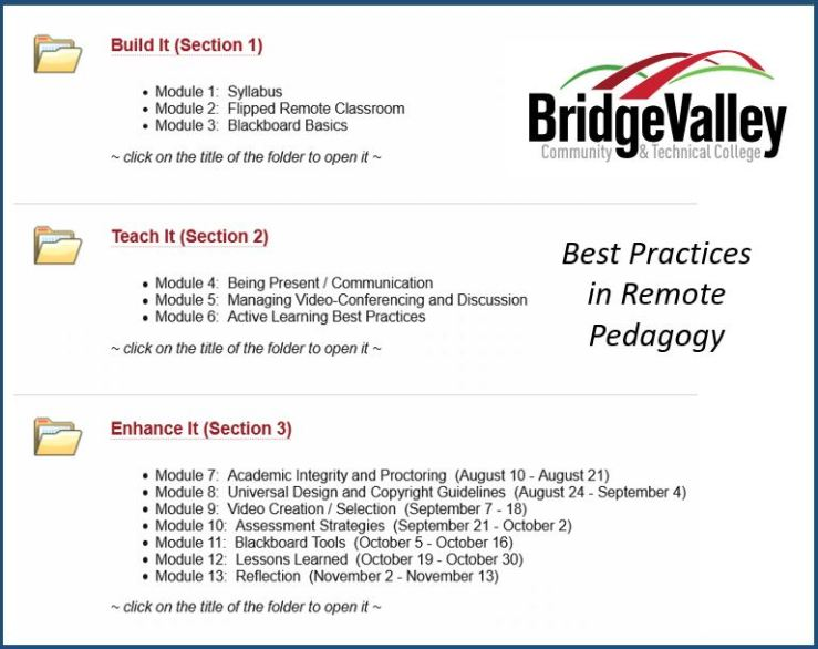 Best Practices in Remote Pedagogy